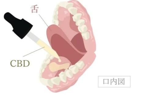 CBDオイルを舌下に垂らす