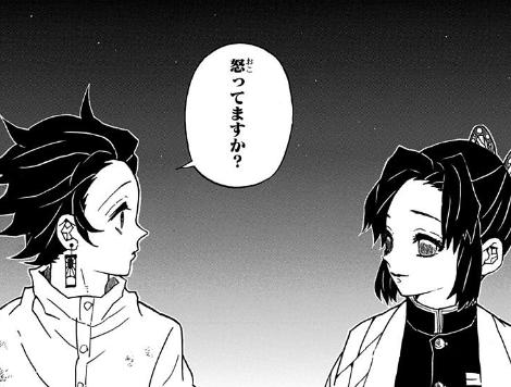 炭治郎と胡蝶しのぶ