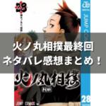 火の丸相撲第28巻の表紙